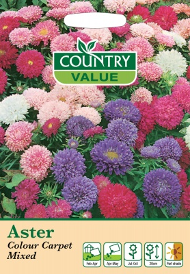 Aster Seeds Colour Carpet Mixed by Country Value