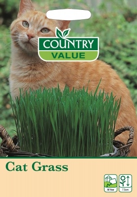 Cat Grass Seeds To Improve Cat Health by Country Value