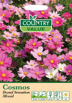 Cosmos Seeds Dwarf Sensation Mixed by Country Value