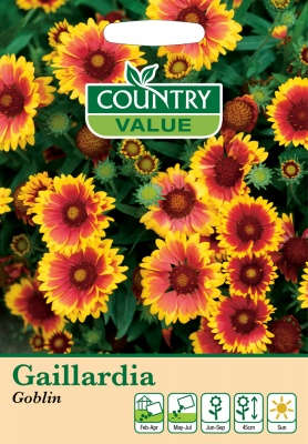 Gaillardia Seeds Goblin by Country Value