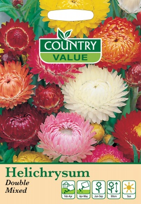 Helichrysum Seeds Double Mixed by Country Value