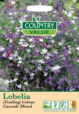 Lobelia Seeds Trailing Colour Cascade Mixed by Country Value