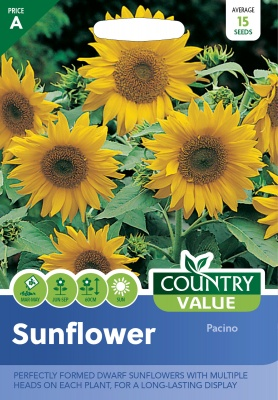Sunflower Seeds Pacino by Country Value