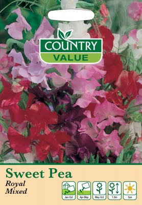 Sweet Pea Seeds Royal Mixed by Country Value