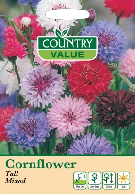Cornflower Seeds 'Tall Mixed' by Country Value