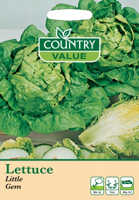 Lettuce Seeds Little Gem by Country Value