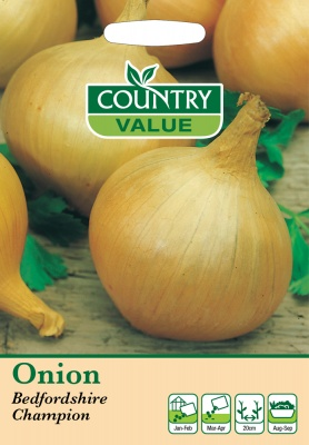 Onion 'Bedfordshire Champion' by Country Value