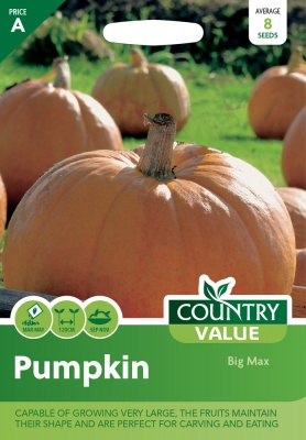 Pumpkin Seeds Big Max by Country Value