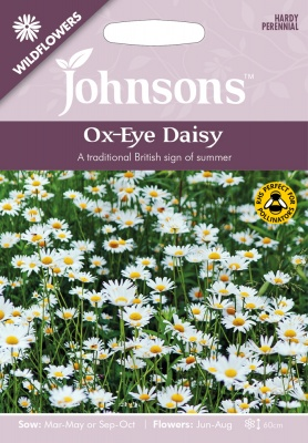 Ox-Eye Daisy Seeds Wildflowers by Johnsons