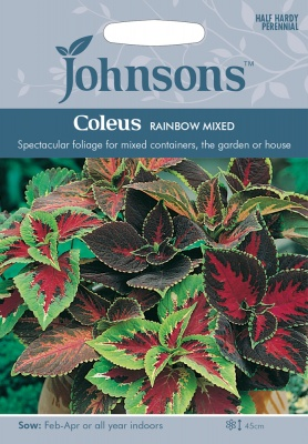 Coleus Seeds 'Rainbow Mixed' by Johnsons