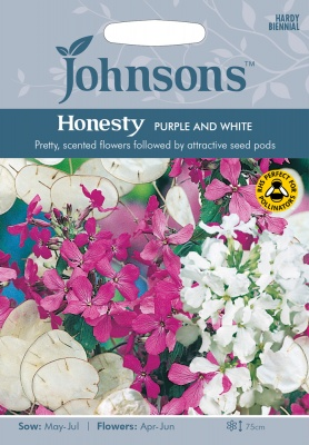 Honesty Seeds 'Purple and White' by Johnsons