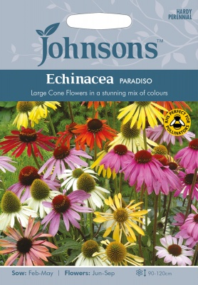 Echinacea Seeds 'Paradiso Mixed' by Johnsons