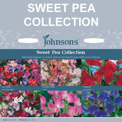 Sweet Pea Collection by Johnsons Seeds