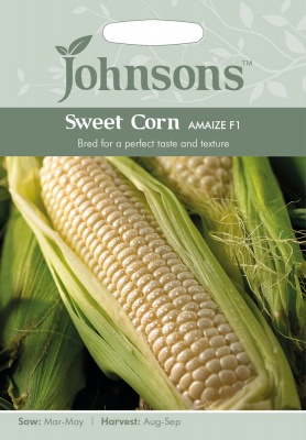Sweet Corn Seeds 'Amaize F1' by Johnsons