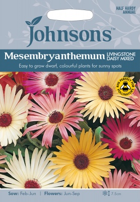 Mesembryanthemum Seeds Livingstone Daisy Mixed By Johnsons