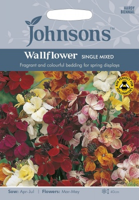 Wallflower 'Single Mixed' by Johnsons