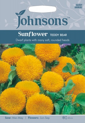 Sunflower Seeds 'Teddy Bear' by Johnsons