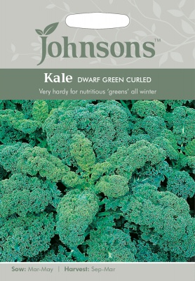 Kale Seeds 'Dwarf Green Cutled' by Johnsons