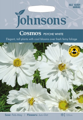 Cosmos Seeds 'Psyche White' Seeds by Johnsons
