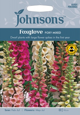 Foxglove Seeds 'Foxy Mixed' by Johnsons