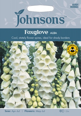 Foxglove 'Alba' Seeds by Johnsons