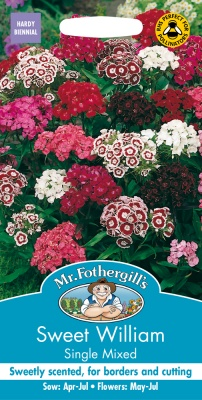 Sweet William Seeds Single Mixed by Mr Fothergills