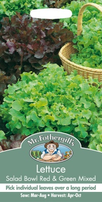 Lettuce Salad Bowl Red & Green Mixed by Mr Fothergills