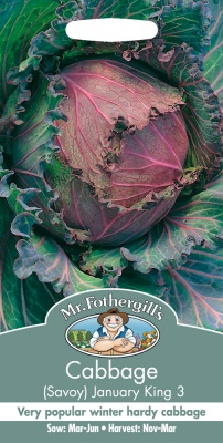 Cabbage Seeds Savoy January King 3 by Mr Fothergill's