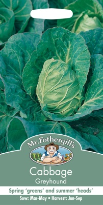 Cabbage Seeds Greyhound by Mr Fothergill's