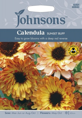Calendula 'Sunset Buff' - Johnsons Seeds 75