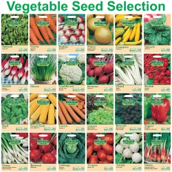 Vegetable Seed Collection by Country Value