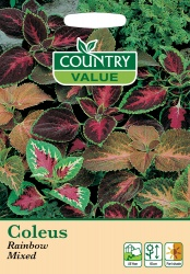 Coleus Seeds Rainbow Mixed By Country Value