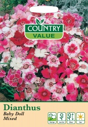 Dianthus Seeds Baby Doll Mixed by Country Value