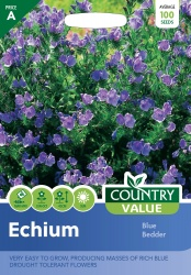 Echium Seeds Blue Bedder by Country Value