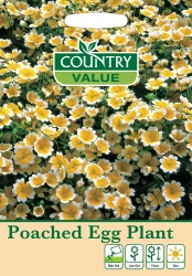Poached Egg Plant Seeds by Country Value