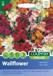 Wallflower Seeds Monarch Fair Lady by Country Value