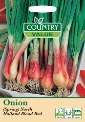 Spring Onion Seeds North Holland Blood Red by Country Value