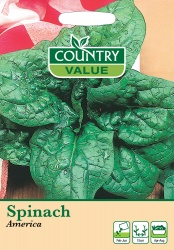 Spinach Seeds 'America' by Country Value