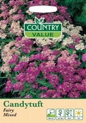 Candytuft Seeds 'Fairy Mixed' by Country Value