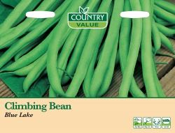 French Bean Climbing 'Blue Lake' by Country Value