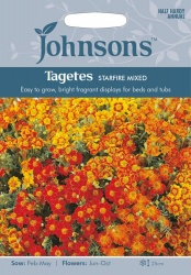 Johnsons Tagetes 'Starfire' Mix - 150 (approx)