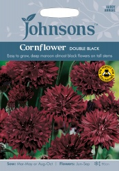 Cornflower Seeds 'Double Black' by Johnsons