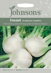 Fennel Seeds 'Florence Chiarino' by Johnsons