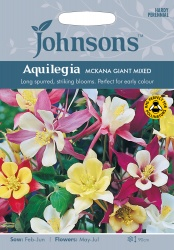 Aquilegia Seeds 'Mckana Giant Mixed' by Johnsons