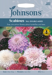 Scabious 'Tall Double Mixed' Seeds by Johnsons