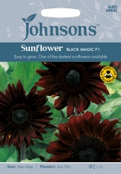 Sunflower Seeds 'Black Magic' by Johnsons