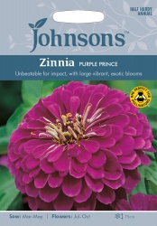 Zinnia 'Purple Prince' Seeds by Johnsons