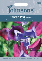 Sweet Pea Seeds 'Cupani' by Johnsons