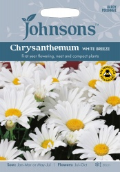 Chrysanthemum Seeds 'White Breeze' by Johnsons