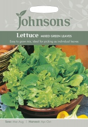 Lettuce Seeds 'Mixed Green Leaves' by Johnsons